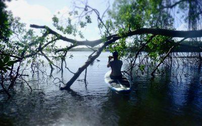 Tobago SUP Adventure